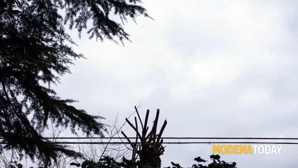 giardini privati - chiara ferrin-2