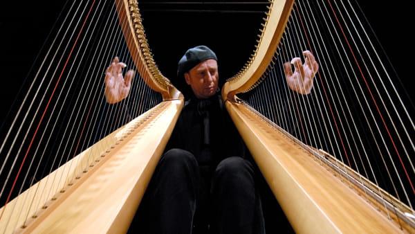 """""""Le vie del suono"""",a Roccapelago i paesaggi sonori dell'arpa celtica"""