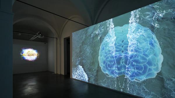 Effimera 2017, al MaTa l'arte e la filosofia dell'effimero