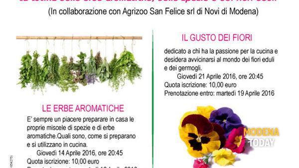 """""""Chi semina raccoglie"""", le erbe aromatiche a Novi"""
