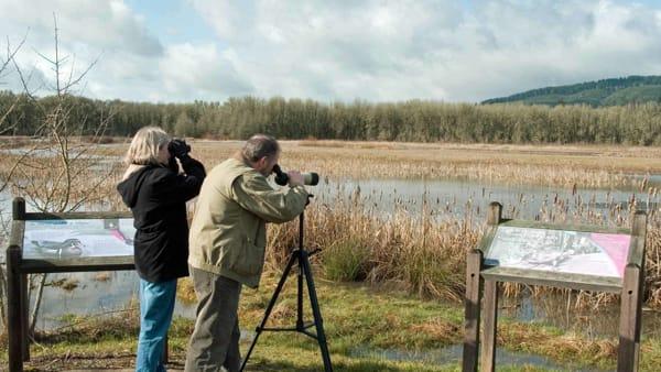 Sito di incontri per birders