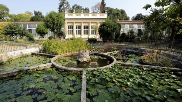 Alla scoperta dell'Orto Botanico, mostra e laboratori per bambini