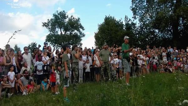 Rapaci, ghiri e ricci liberati dal Centro Fauna sui monti di Zocca - IL VIDEO