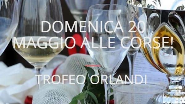 """Una domenica di festa all'Ippodromo Ghirlandina con il """"Trofeo Orlandi"""""""