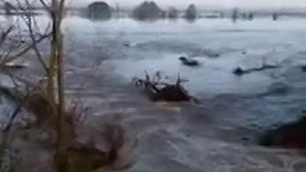 IL VIDEO | Argine rotto lungo il canale Diversivo, campagne allagate