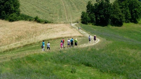 Fiorano Modenese, passeggiata alla ricerca della via dei vulcani di fango