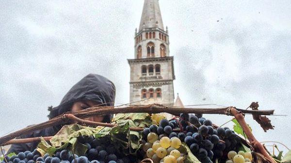 Parva Naturalia, mercato biologico e biodinamico in Piazza Grande