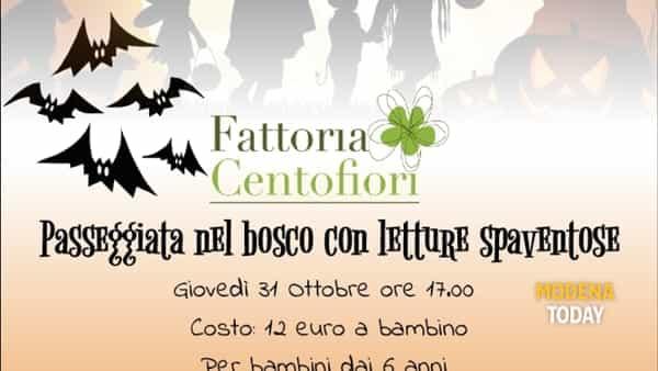 Halloween alla Fattoria Centofiori