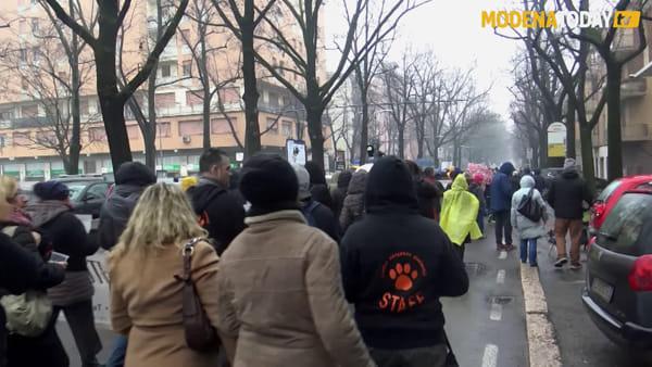 Manifestazione contro le violenze sugli animali. Tanti modenesi a sostegno del cane Zeus