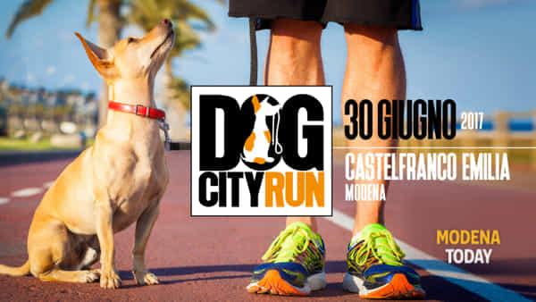 Dog City Run, a Castelfranco la prima corsa a sei zampe
