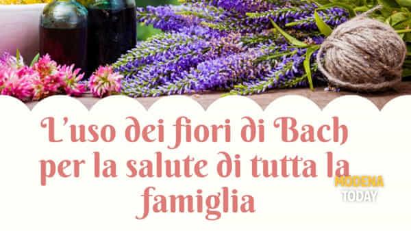 """""""L'uso dei fiori di Bach per la salute"""", un incontro a Castelnuovo"""