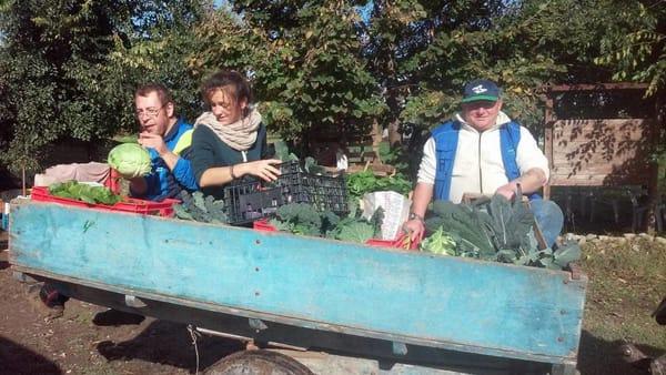 Modena ospita la Festa Nazionale dell'agricoltura sociale